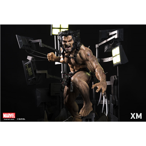 Wolverine Weapon X Project